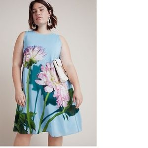Anthropologie Photorealistic Silk Dress